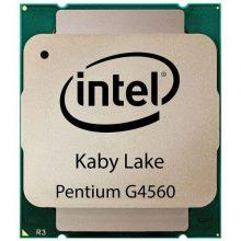 سی پی یو اینتل Pentium G4560